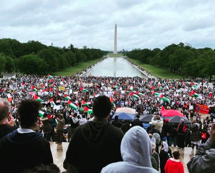 The March for Palestine Was Ignored by Mainstream Media, but People on Social Media Continue To Report the Facts thumbnail